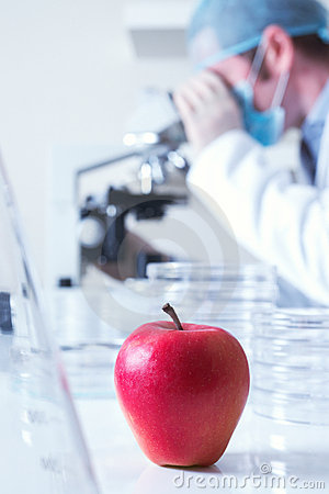 Genetically modified red apple