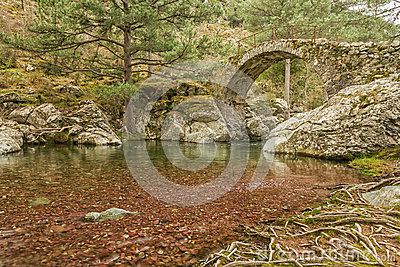 Genoese bridge over a river in Corsica