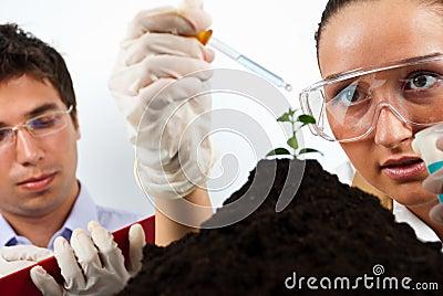 Gente agrícola de los científicos
