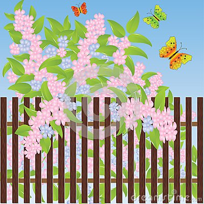 Gentle flowers and multi-colored butterflies