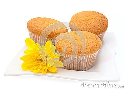 Gentle vanilla cakes