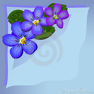 Gentle violets background
