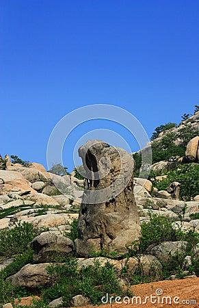 Geologic- Sea corrode Stone