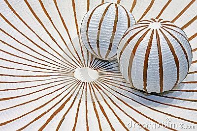 Geometric balls