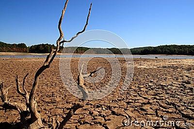 Georgia Drought