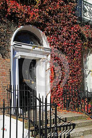 Free Georgian Door Surrounded By Ivy. Dublin . Ireland Royalty Free Stock Image - 27537136