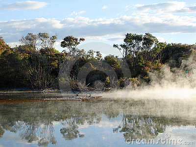 Geothermal Activity in Kuirau Park, New Zealand