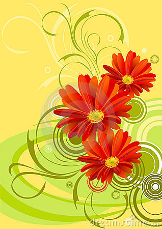 Free Gerbera Flower Background Design Stock Images - 8005814