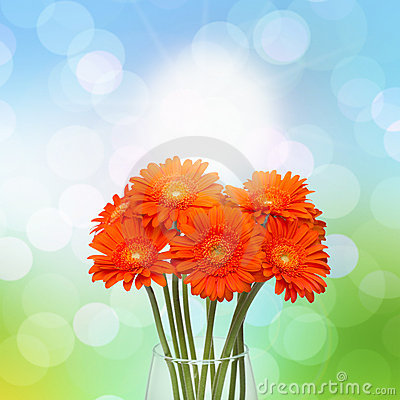 Free Gerberas In Vase Stock Photos - 19167793