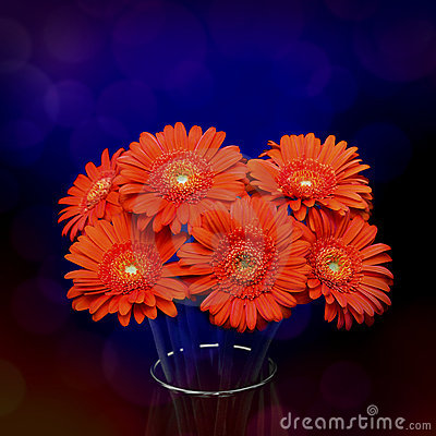 Free Gerberas In Vase Royalty Free Stock Photo - 19229455