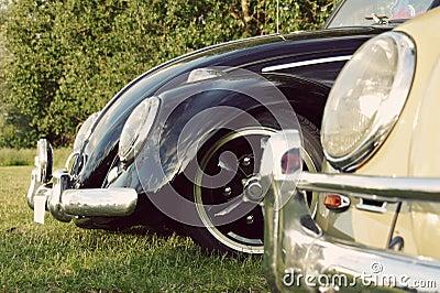German Classic Car - Beetles
