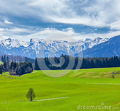 Free German Idyllic Pastoral Countryside In Spring With Alps In Backg Royalty Free Stock Photo - 34468165