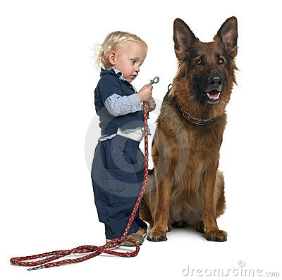 German shepherd dog with boy attaching leash