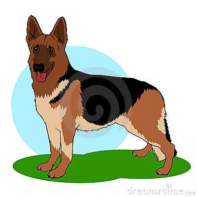 German shepherd dog illustration