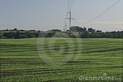 Germination field and electric line.
