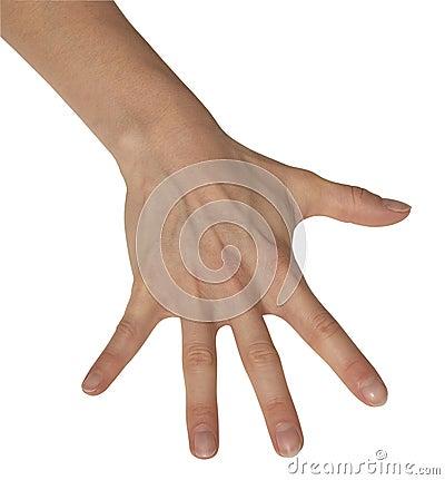 Geschrägte weibliche Hand