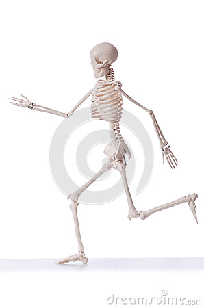 Geïsoleerdg skelet
