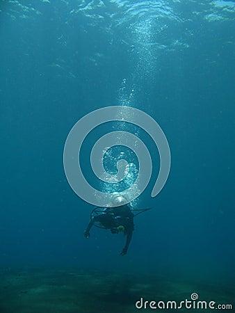 Get dive