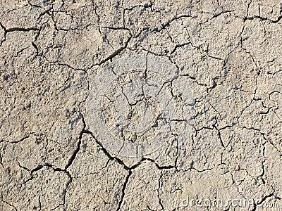 Getrockneter Boden