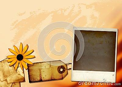 Gewebe-Collage