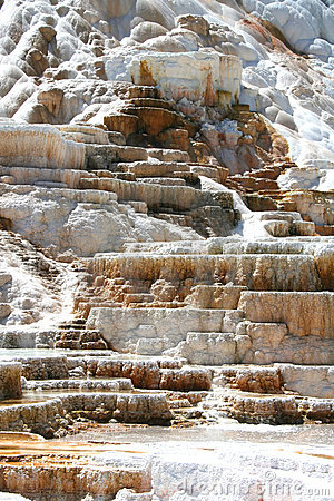 Free Geyser In Yellowstone National Park Stock Image - 5880261