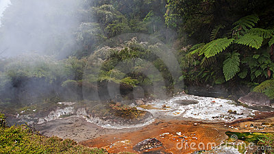 Geysers and hot springs are located in many places
