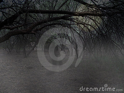 Ghost in Woods