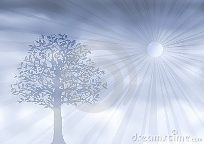 Ghostly silver tree