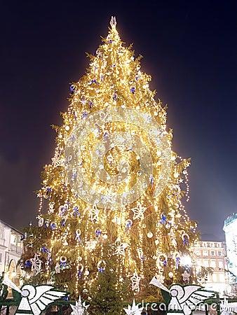 Giant christmas tree
