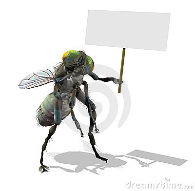 Free Giant Fly With Blank Sign Royalty Free Stock Image - 5122296