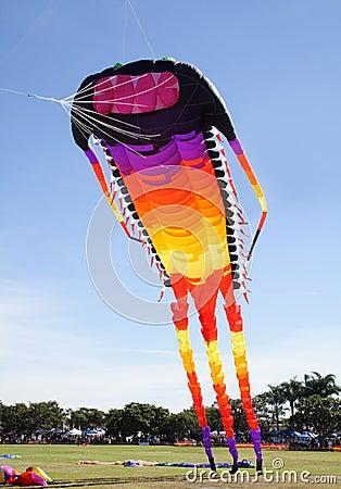 Free Giant Kite Stock Photos - 14327533