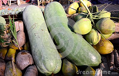 Giant Long Cucumber and Coconuts
