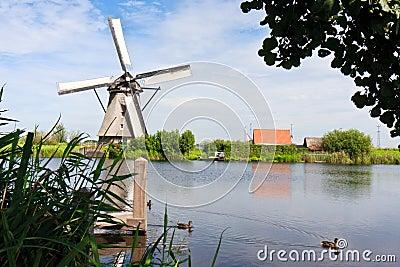 Giant of Netherlands