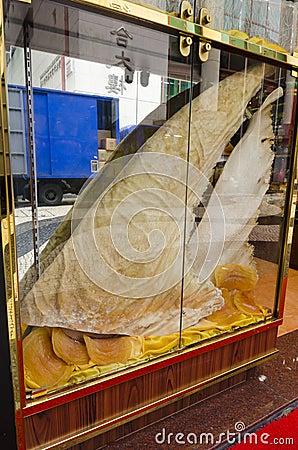 Giant Shark fin