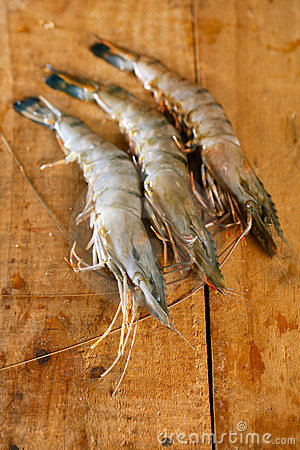 Giant tiger raw shrimps prawns