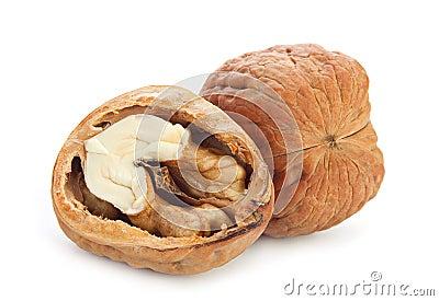 Giant walnut