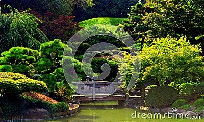 Giardino Giapponese Fotografie Stock Immagine 12894413