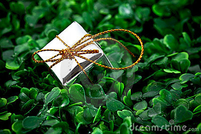 Gift box in grassy background