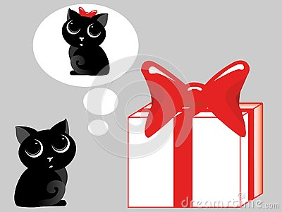 Gift for a cat
