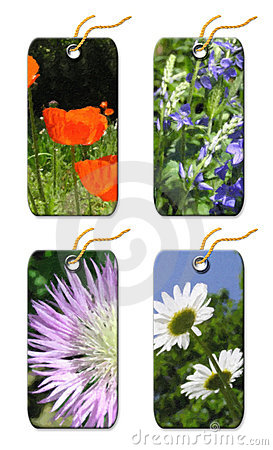 Free Gift Tags Whis  Flowers Stock Photos - 5381423