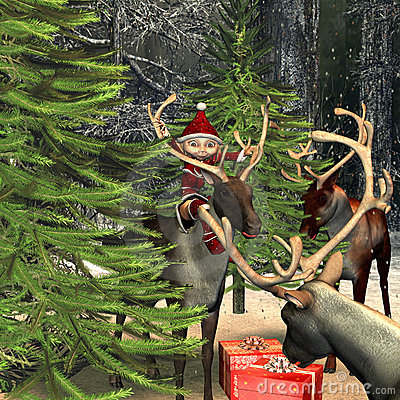 Gifts  in  the forest