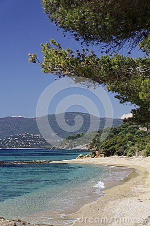 Gigaro beach, French Riviera, Southern France, Europe