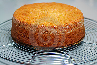 Ginger cake base