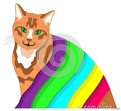 Ginger cat under a colourful blanket
