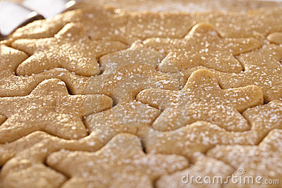 Gingerbread  star cookie cuts doug