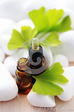Ginko essential oil