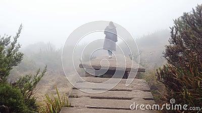 Giovane turista femminile all'impermeabile che cammina di sopra del ponte roccioso all'aperto Donna che va su sulle scale di piet stock footage