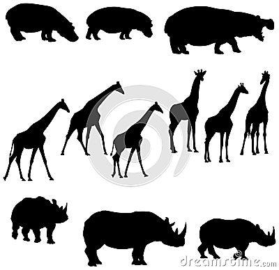 Носорог giraffe гиппопотама