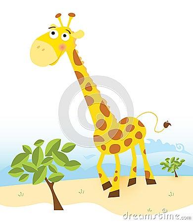 Free Giraffe Royalty Free Stock Photos - 8767728