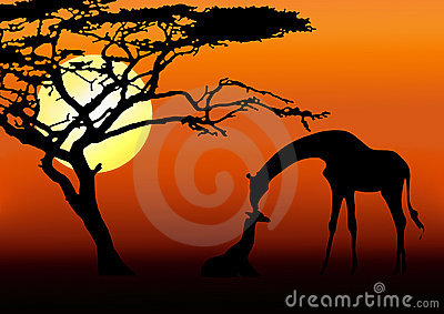 Giraffe and baby silhouette